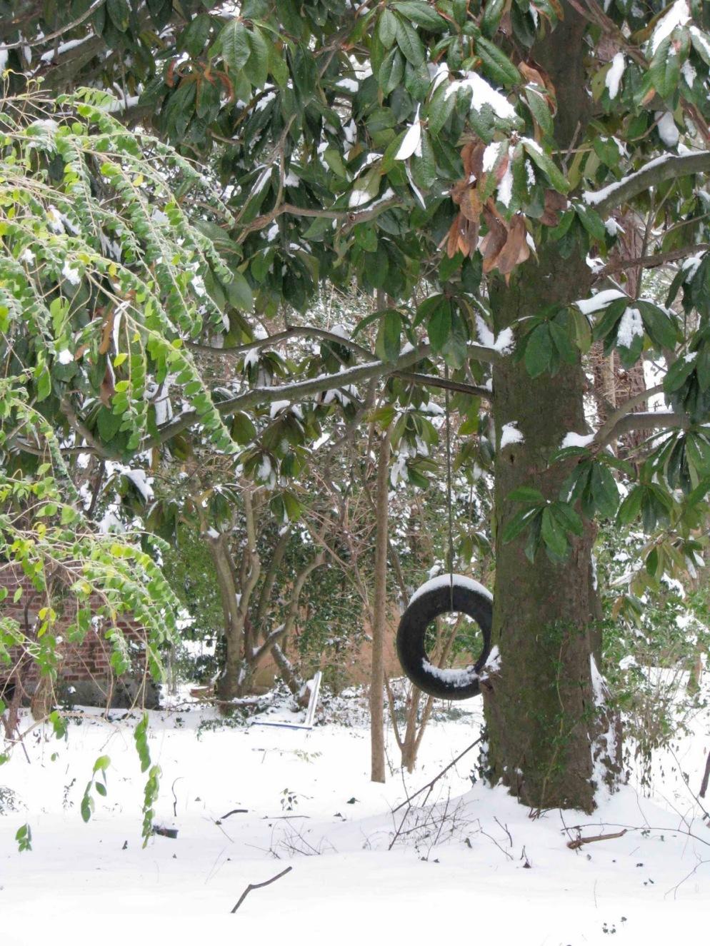 snowtires2