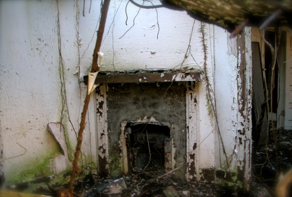 This is the fireplace inside a small collapsed residential home in Decatur. The roof has fallen in and the kitchen floor, once covered in cheerful red linoleum, has collapsed into the basement. Someone loved this house once - there are raised garden beds in the back and a bed of irises in the front yard. I often wonder what happened to them.