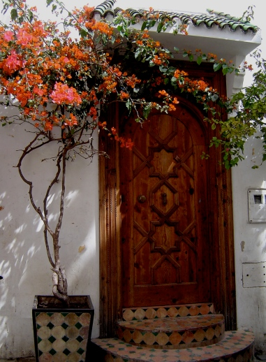 doorway with bougainvillia, Tangier, Morocco